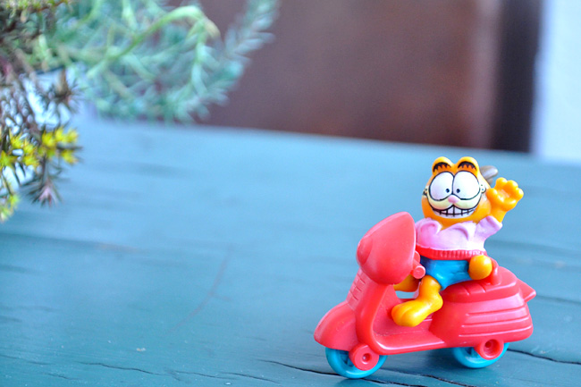 Garfield meeltoy